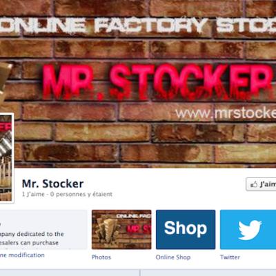 MR. STOCKER S.L